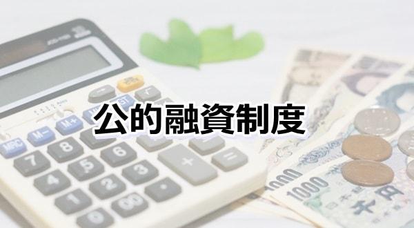 公的融資制度
